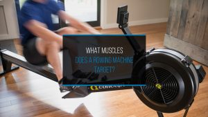 What Muscles Does A Rowing Machine Target - WP